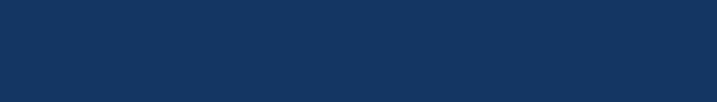 decision lens_Logo